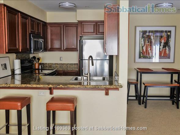 Hillcrest Medical Area Retreat - Walkable to UCSD and Scripps Mercy Hospitals Home Rental in San Diego, California, United States 0
