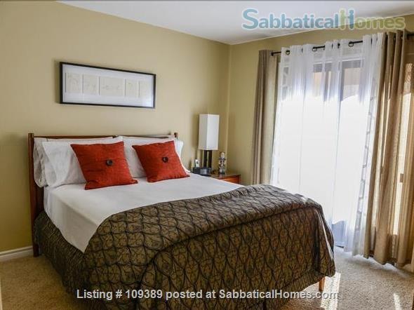 Hillcrest Medical Area Retreat - Walkable to UCSD and Scripps Mercy Hospitals Home Rental in San Diego, California, United States 3
