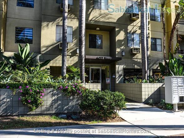 Hillcrest Medical Area Retreat - Walkable to UCSD and Scripps Mercy Hospitals Home Rental in San Diego, California, United States 8