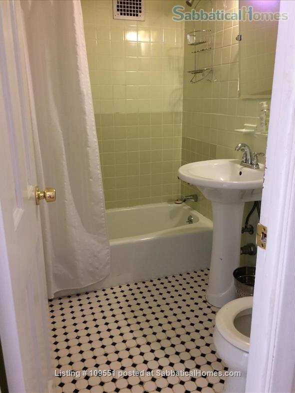 1 BR/1 bath garden-level apartment in Bedford-Stuyvesant Home Rental in Brooklyn, New York, United States 5