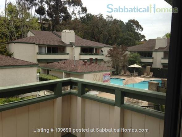 UCSD, SDSU, La Jolla Shore, UTC Home Rental in San Diego, California, United States 7
