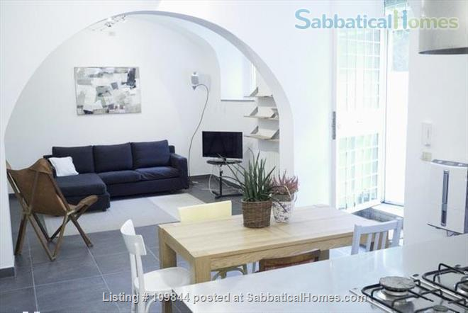 Openspace flat in central area with luxuriant mediterranean garden Home Rental in Rome 0 - thumbnail