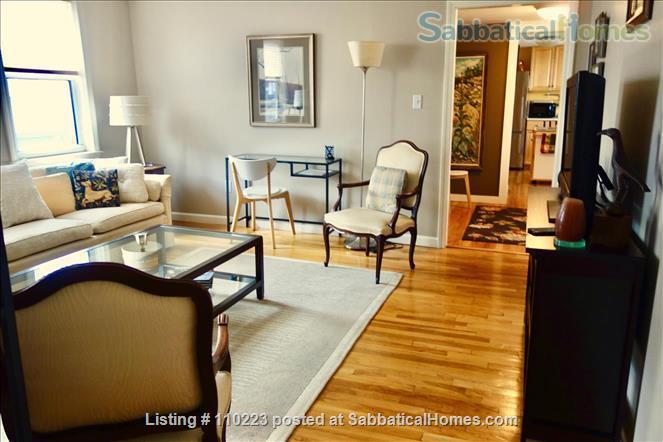Perfect MIT/Harvard-adjacent Cambridge Home Home Rental in Cambridge, Massachusetts, United States 2