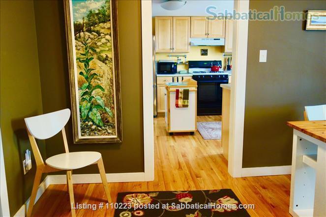 Perfect MIT/Harvard-adjacent Cambridge Home Home Rental in Cambridge, Massachusetts, United States 6
