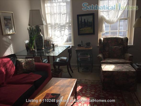 Serene Sunny Apartment Home Rental in Washington, District of Columbia, United States 1