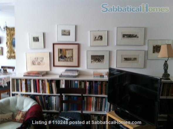 Serene Sunny Apartment Home Rental in Washington, District of Columbia, United States 2
