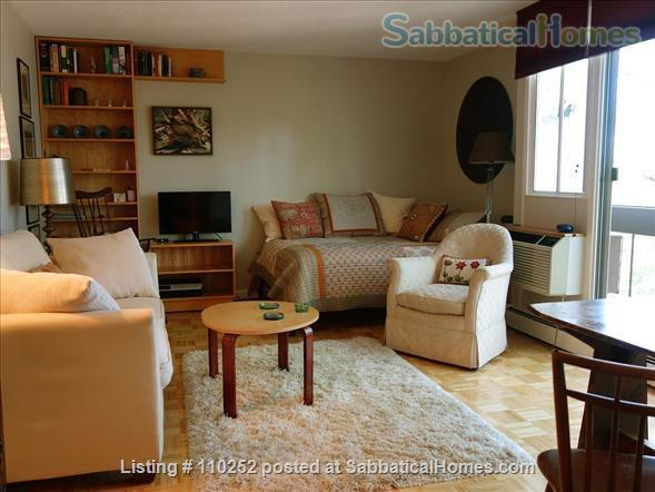 Ideal Central Square Studio w Parking - ALL UTILITIES INCLUDED Home Rental in Cambridge, Massachusetts, United States 0