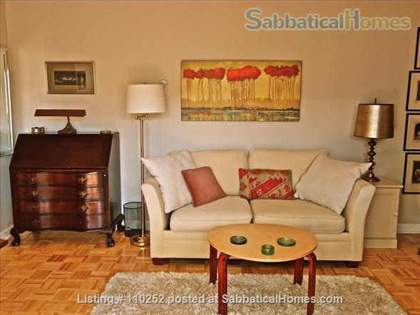 Ideal Central Square Studio w Parking - ALL UTILITIES INCLUDED Home Rental in Cambridge, Massachusetts, United States 4