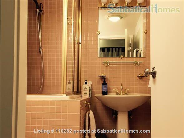 Ideal Central Square Studio w Parking - ALL UTILITIES INCLUDED Home Rental in Cambridge, Massachusetts, United States 7
