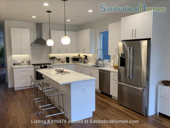 Elegant, New Modern Home in Evanston Home Rental in Evanston, Illinois, United States 1