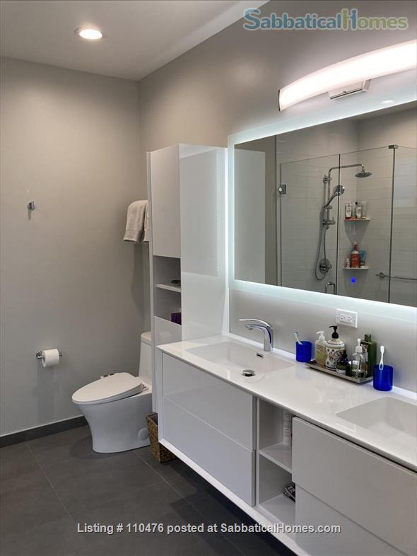 Elegant, New Modern Home in Evanston Home Rental in Evanston, Illinois, United States 5