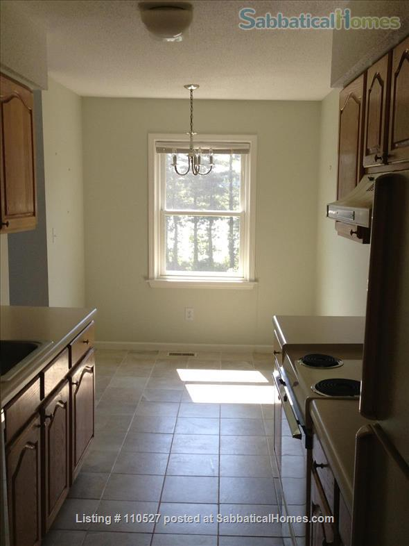 Sunny 1 bedroom near Yale Home Rental in Hamden, Connecticut, United States 0
