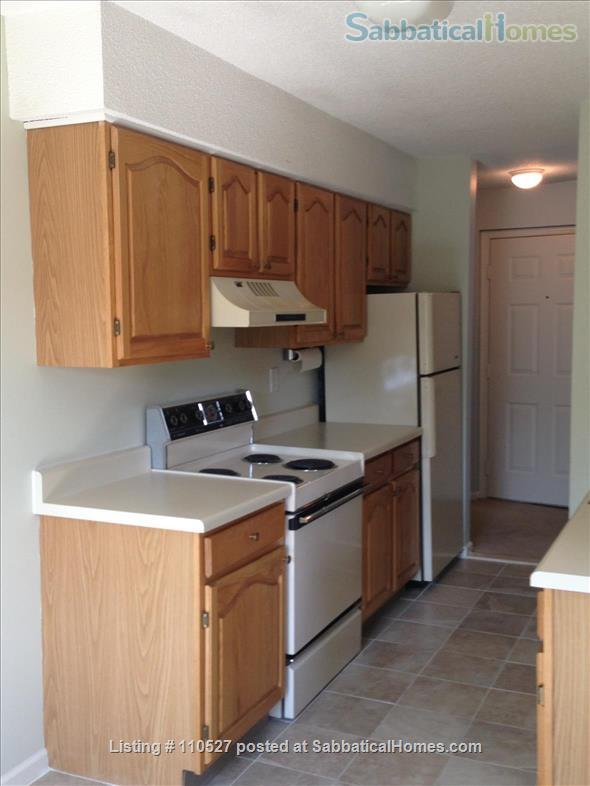 Sunny 1 bedroom near Yale Home Rental in Hamden, Connecticut, United States 3