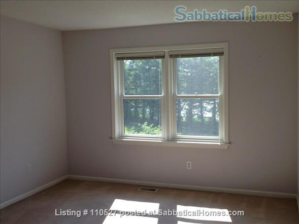 Sunny 1 bedroom near Yale Home Rental in Hamden, Connecticut, United States 6