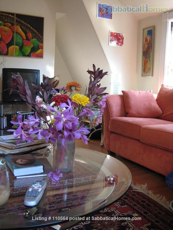 Harvard Square Extended Stay (M815) Home Rental in Cambridge, Massachusetts, United States 1