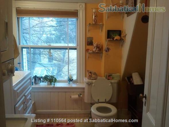 Harvard Square Extended Stay (M815) Home Rental in Cambridge, Massachusetts, United States 5