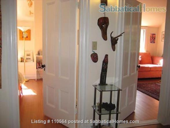 Harvard Square Extended Stay (M815) Home Rental in Cambridge, Massachusetts, United States 6