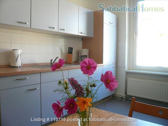 Bright, cosy, spacious 1-room apartment Home Rental in Berlin, Berlin, Germany 4