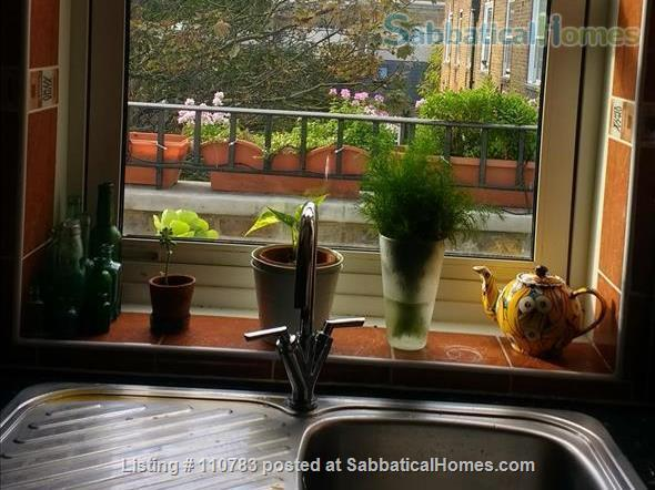 Light filled Camden flat  - 15 mins walk to British Library and UCL. Home Rental in Greater London, England, United Kingdom 4