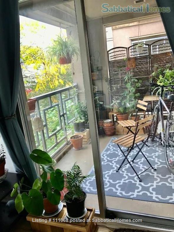 Beautiful Kitsilano apartment. Pet friendly. Great location near the beach, mountain views Home Exchange in Vancouver, British Columbia, Canada 3