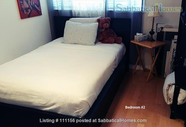 Cat Lovers – enjoy your stay in Vancouver's vibrant Kitsilano! Home Rental in Vancouver, British Columbia, Canada 8