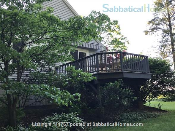 Quiet 1 Bedroom Accessory Apartment Close to Umass Amherst Home Rental in Hadley, Massachusetts, United States 8