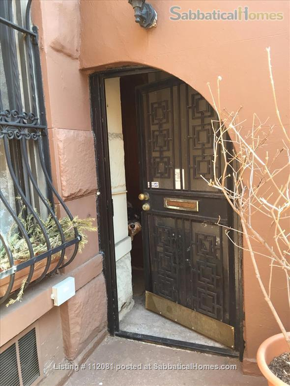 Charming 1 BR Garden Apartment in Harlem Home Rental in New York, New York, United States 9