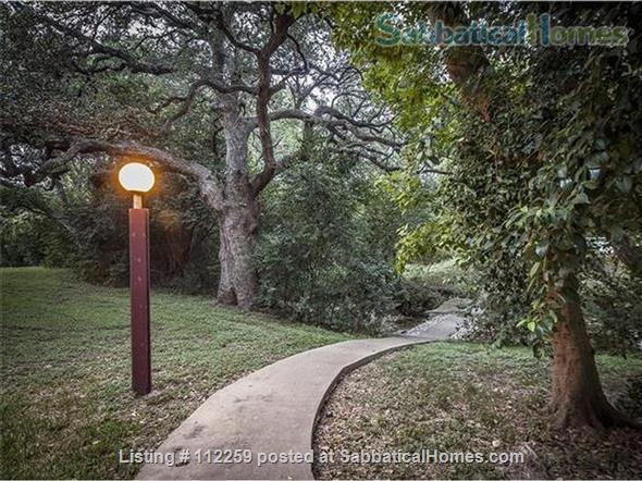 Condo in Central Austin, Bike friendly, bus friendly and reserved parking! Home Rental in Austin, Texas, United States 0