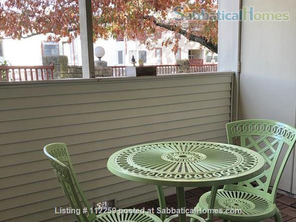 Condo in Central Austin, Bike friendly, bus friendly and reserved parking! Home Rental in Austin, Texas, United States 8