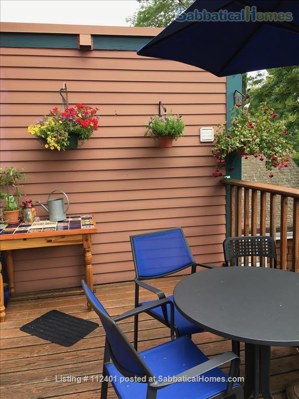 Comfortable 3 BD/2BA in Cambridge MA, close to Harvard and MIT Home Rental in Cambridge, Massachusetts, United States 9