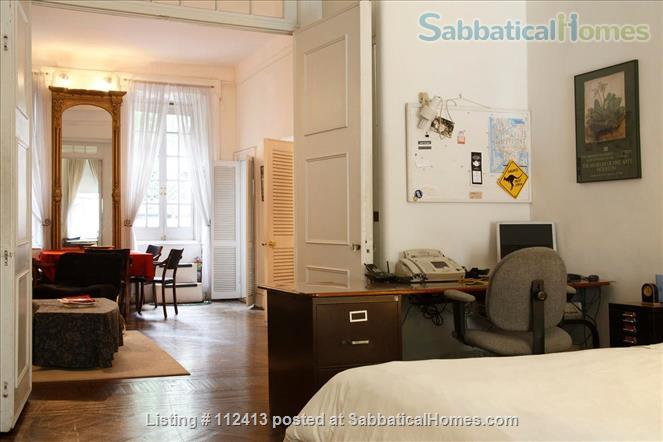 Greenwich Village Brownstone-Huge Private Deck, Separated Entrance Home Rental in New York, New York, United States 8