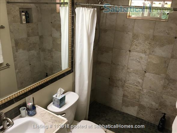 UT/Hyde Park cottage w/patio; PAID Elec/water/WiFi/Washer/Dryer/Bike Home Rental in Austin, Texas, United States 5
