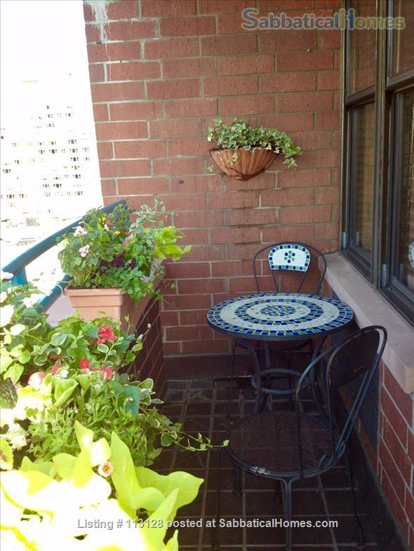West Village Gem with Empire State Building/Manhattan Views!  Short and Long-Term Rental!  Home Rental in New York, New York, United States 4