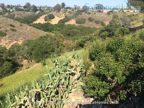 CANYON HOUSE NEAR UCSD Home Rental in San Diego, California, United States 2