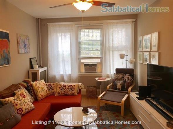 Short Term Rental - Nice 1 bed Condo near BC/BU Harvard Med/Boston Home Rental in Boston, Massachusetts, United States 1