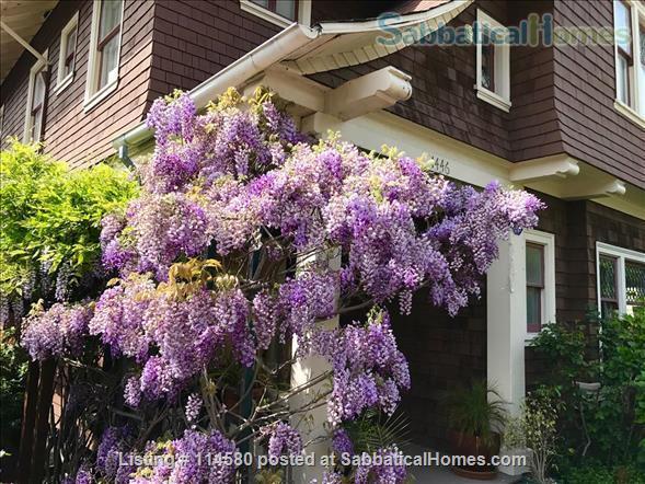 Berkeley Hills Craftsman with stunning bay views, close to campus Home Rental in Berkeley, California, United States 9