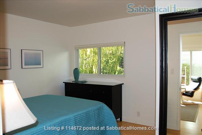 SUNNY CONVENIENT  BERKELEY APARTMENT  Home Rental in Berkeley 5