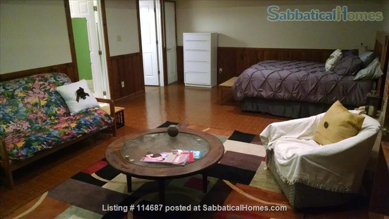Furnished apartment in quiet, wooded neighborhood near UNC Home Rental in Chapel Hill, North Carolina, United States 0