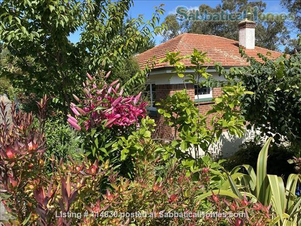 Sunny 3-bedroom home set in tranquil sheltered garden, fully furnished Home Rental in Dunedin, OTA, New Zealand 1