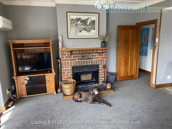 Sunny 3-bedroom home set in tranquil sheltered garden, fully furnished Home Rental in Dunedin, OTA, New Zealand 3