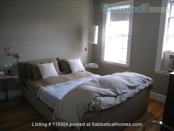 Beautiful 1 bedroom furnished apartment Home Rental in Cambridge, Massachusetts, United States 2