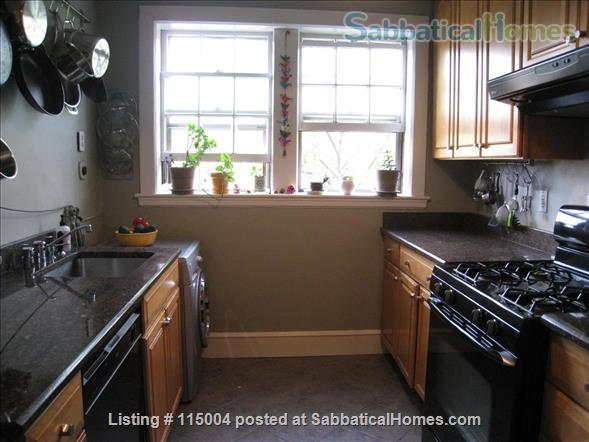 Beautiful 1 bedroom furnished apartment Home Rental in Cambridge, Massachusetts, United States 0