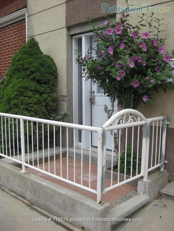 Cozy, central  ground floor flat, close to transit! Home Rental in Toronto, Ontario, Canada 0