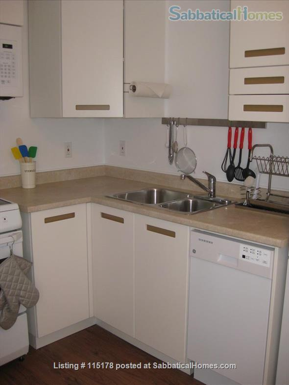Cozy, central  ground floor flat, close to transit! Home Rental in Toronto, Ontario, Canada 3