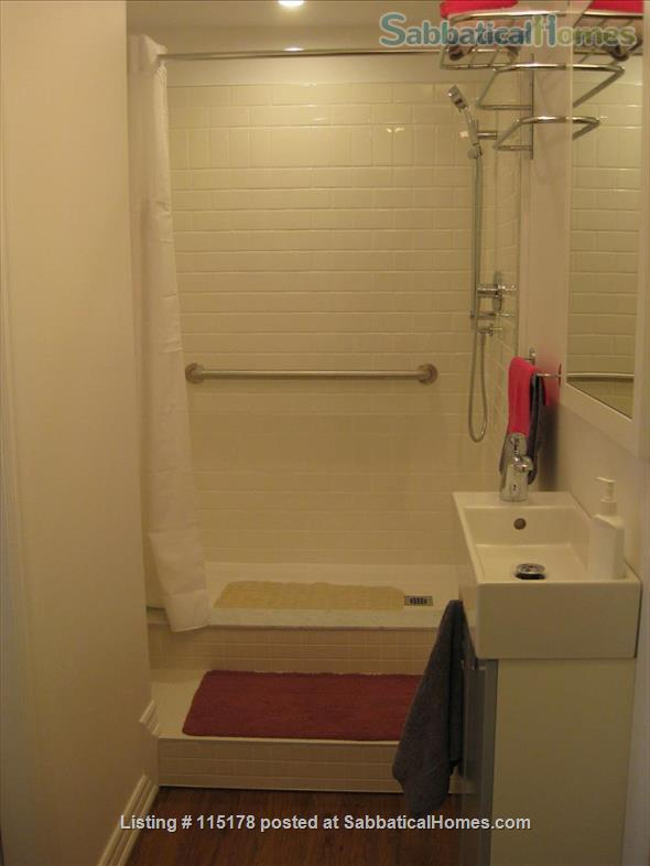 Cozy, central  ground floor flat, close to transit! Home Rental in Toronto, Ontario, Canada 7