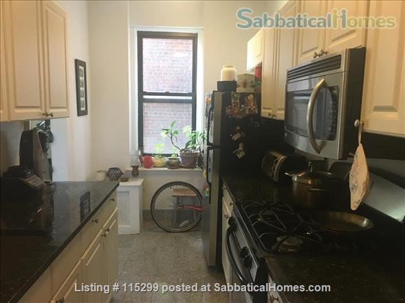 Large & sunny 2-bedroom in Windsor Terrace, Brooklyn, NYC Home Exchange in Brooklyn, New York, United States 0
