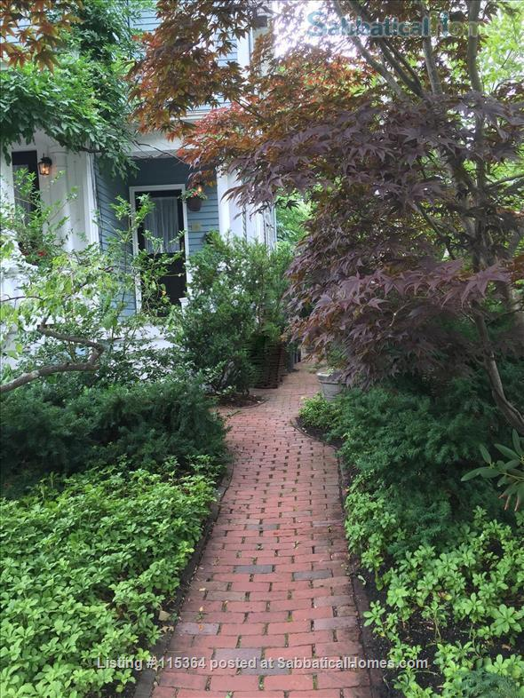 Charming, Sunny One Bedroom Apartment in West Cambridge Home Rental in Cambridge, Massachusetts, United States 1