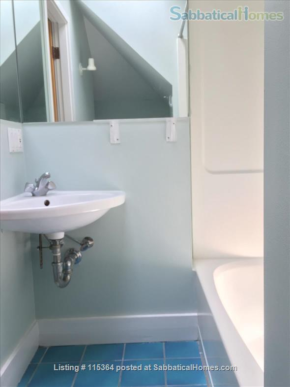 Charming, Sunny One Bedroom Apartment in West Cambridge Home Rental in Cambridge, Massachusetts, United States 4