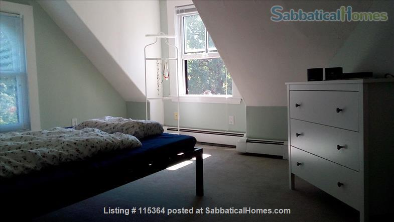 Charming, Sunny One Bedroom Apartment in West Cambridge Home Rental in Cambridge 8 - thumbnail