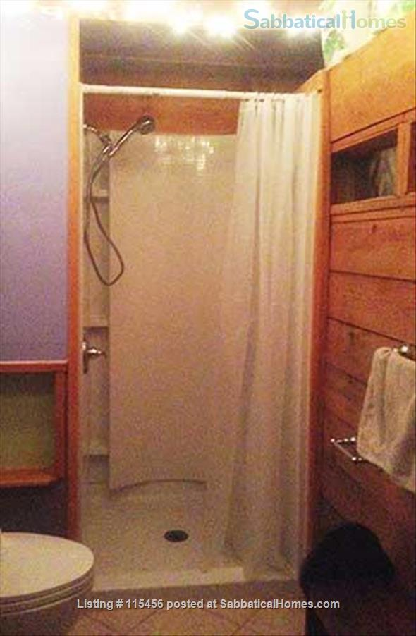 J4 Sunny, Cozy Patio Cabin, 3 Blocks BART, Private Shower Home Rental in Berkeley, California, United States 5